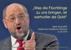 schulz_migration